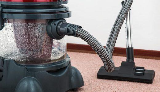 掃除機で掃除をするとダニも吸える?ダイソンや布団掃除機のレイコップなどでも綺麗に出来るのか